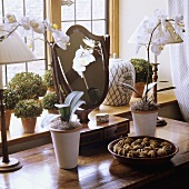 White orchids and a table lamp with a white shade on a table in front of a window