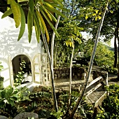 Tropical garden with a bungalow