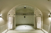 An elegant bathroom under a barrel ceiling with a luxury shower area and an empyrean