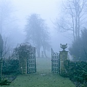 An open metal gate of an English garden wreathed in fog