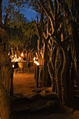 A terrace light by flaming torches in a South African landscape