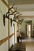 Collection of antlers on a half-timbered wall in a passage