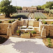 A flight of steps with natural stone wall in a Mediterranean terrace garden