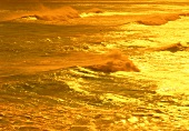 Goldene Meeresbrandung in Maui, Hawaii