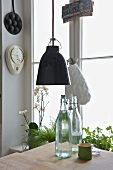 Pendant light in front of window