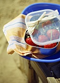 Blue plastic plate and box filled with strawberries on striped teacloth
