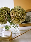 A detail of hydrangeas in a glass vase, photo frame,