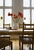 Red amaryllis in a white vase on a wooden dining table in front of a window