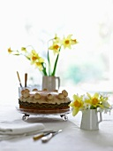 A cake in a shallow glass bowl and daffodils in various vases