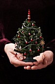 Hands holding a mini Christmas tree