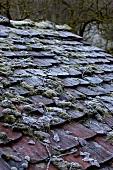 Verwittertes Dach im Winter