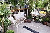 Pflanzen in Töpfen auf Regalen und Metalltisch mit Bank in einem Gewächshaus