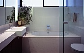 A modern bathroom with a designer glass partition wall