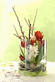 Tulips, white hyacinths and a sprig of flowers in a glass vase with stones