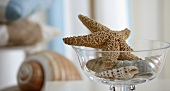 Starfish and shells in a glass bowl as table decoration