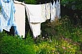 Helle Wäsche auf Leine in wildem Garten auf dem Land