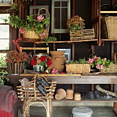 Körbe und Blumentöpfe auf den Regalen in Gartenhaus