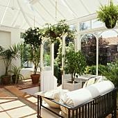 Ein sonniger und traditionell eingerichteter Wintergarten mit schwarzen und weißen Möbeln und großen Pflanzen