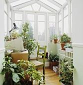 Kleiner, weisser Wintergarten mit Pflanzen - als Büroarbeitsplatz genutzt