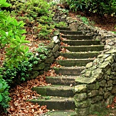 Herbstlaub auf Steinstufen mit niedrigen Mauer in Hanggrundstück