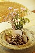 Wisenblumen in Keramikvase und Tannenzapfen im Teller