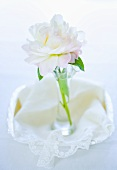 A peony in a vase on a lace cloth