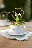 Spring table decoration in a porcelain cup