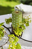 A green candle and a sprig of Norway maple on a table in the open air