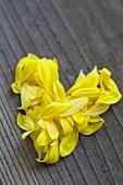 A heart of sunflower petals