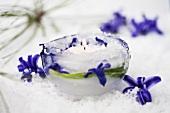 Eis-Windlicht mit Hyazinthenblüten dekoriert