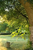 A view through an archway into a garden