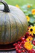 Herbstliche Dekoration mit einem Kürbis