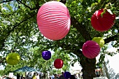 Colourful lanterns hanging in trees during a summer party