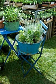 Blue galvanized wash tubs with plants on a garden chair