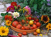 Fresh tomatoes in bowl surrounded by summer flowers
