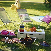 Summer picnic with barbecue in the open air