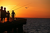 People Fishing Off of a Pier in Australia