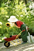 A little girl dressed as a gardener with a wheelbarrow and a sunflower