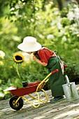 Kleines Mädchen als Gärtner mit Schubkarre und Sonnenblume