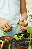 Kind mit Pflanzen
