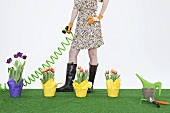 A woman watering tulips on artificial turf