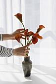 A woman arranging flowers