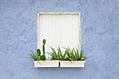 Blumenkästen vor Fensterladen