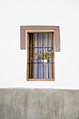 A plant pot hanging on window bars