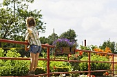 Rear view of a girl standing on a fence