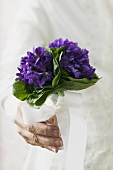 Bunch of violets with white bow