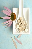 Purple coneflower (Echinacea) with tablets