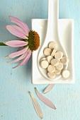 Sonnenhut (Echinacea) mit Tabletten