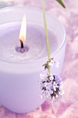 Lavender-scented candle