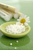 Globuli (homeopathic remedy) with chamomile flower